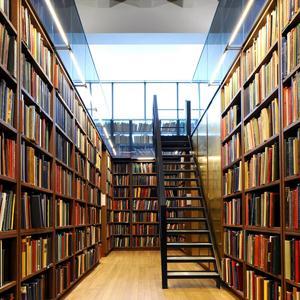 Библиотеки Сузуна